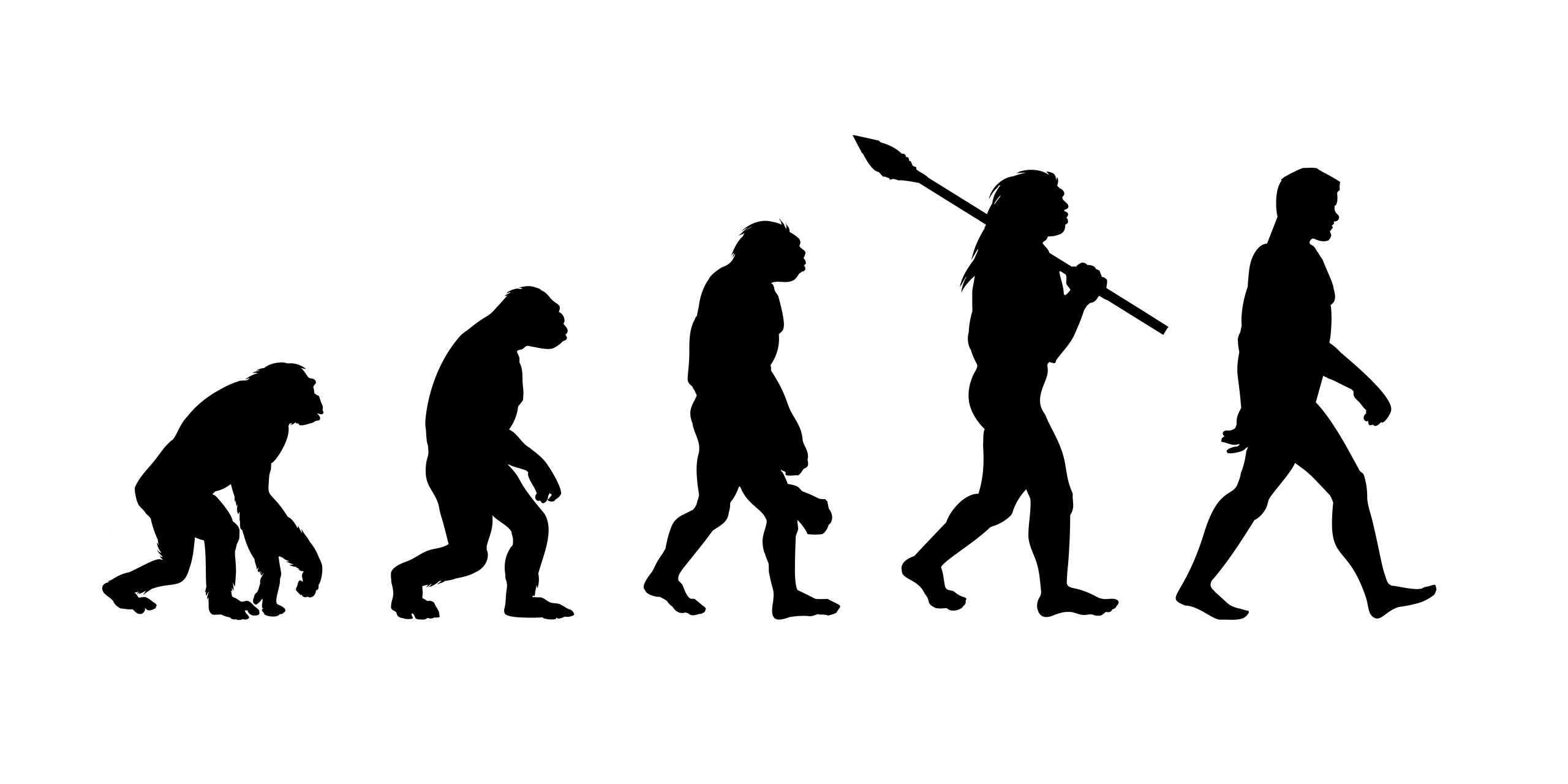 Evolution of Man Silhouette